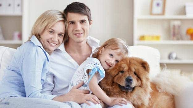 Wills & Trusts dog-young-family Direct Wills Melton Mowbray